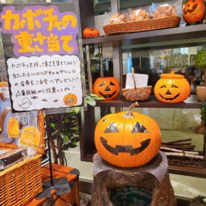 10/31(日)まで【かぼちゃの重さ当て】🎃
